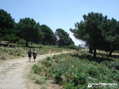 Pinares de Piedralaves; municipios de toledo rutas senderismo sierra de madrid mochilas de senderism